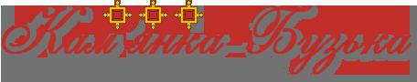Кам'янка-Бузька – Інформаційна вітрина міста у мережі
