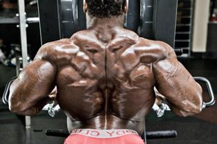 Що заважає росту м'язів спини?