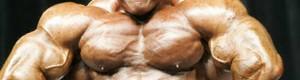 Класична програма тренувань для росту маси тіла.